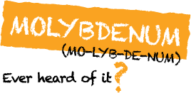 MO-LYB-DE-NUM--